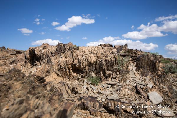 Del Uul - Gobi desert