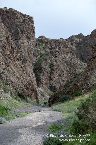 Yolyn Am - Gobi desert